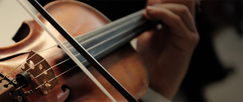 Violin đẹp