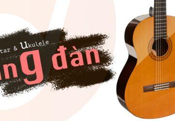 Nơi học đàn guitar cho sinh viên