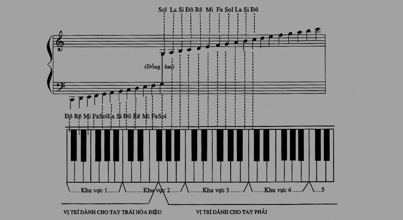 Nốt nhạc trên đàn organ